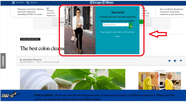 This is a screenshot of the type of websites and pop ups this software creates for you