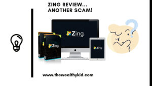 Zing software review summary